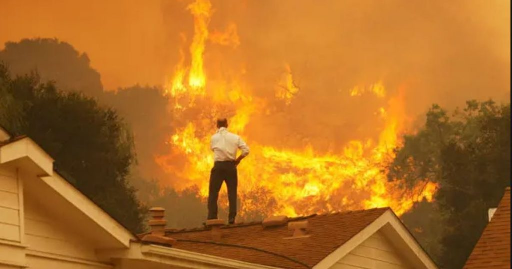 Californian Wildfire: Photo Credit - NY Times